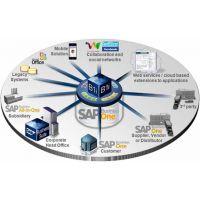 绍兴SAP ERP系统 绍兴SAP B1软件 尽在优德普SAP服务公司