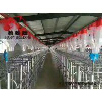 福宇养猪设备安装自动化上料系统自动化料线