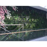扬州仿真绿植墙 仿真花墙 假植物 混合植物可来图定制