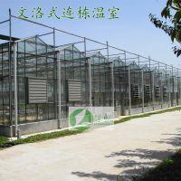 供应智能连栋温室骨架材料 智能育苗玻璃温室 阳光板温室 施工