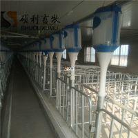 自动化养猪设备喂猪自动料线养猪自动供料系统定时定量同一时间饲喂