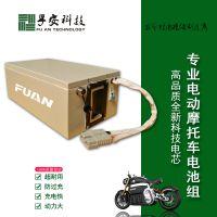 摩托车电池/电动车用电池/磷酸铁锂电池/超强动力