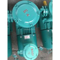 YBBP-112M-4-4KW 隔爆型变频调速电动机