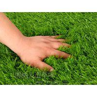 【博纳15803376799】足球场人造草坪和休闲人造草坪的草丝颜色有哪些