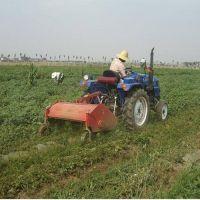 建平县 洋芋杀秧机 红薯土豆杀秧机 供应打秧设备价格