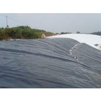 土工材料直销厂家,大量供应国标防渗膜,产品质量保证
