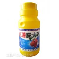 红薯膨大素厂家 红薯控旺增产膨大素 防畸形抗病