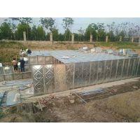 BDF地埋式箱一体化厂家 抗浮地埋水箱 地埋式水箱