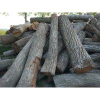 长期供应黄杨木苦楝木枣木核桃木原木
