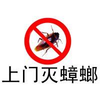 重庆杀虫公司服务,酒店专业除虫服务公司重庆专业除四害公司服务