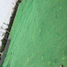 工地盖土网 裸土地面防尘网 绿化塑料网