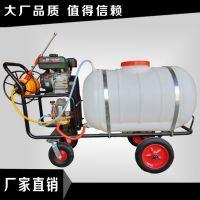 200L高压大容量打药机 富兴简单操作喷药机 花园驱虫打药机图片