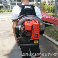 小型背负式汽油吹风机 环卫工具吹风机 路面清理机