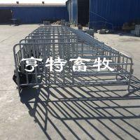 江西赣州发50套母猪定位栏养猪配套设备