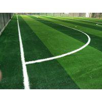 石林县供应人造草坪足球场设计与施工