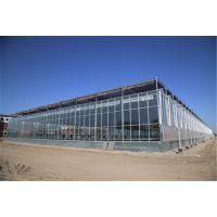 宁夏5000平方生态园林餐厅玻璃生态餐厅工程项目造价