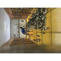 鸽舍黄色养殖玻璃钢格栅 建昌鸽舍黄色养殖玻璃钢格栅 鸽舍黄色养殖玻璃钢格栅厂家