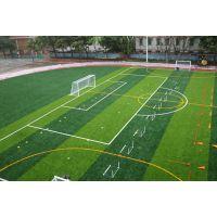 河北仿真人造草 20mm高度单丝草 塑料草PP和PE材质人造草皮