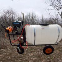 水雾两用喷雾器 启航蔬菜大棚喷药机 远射程大容量手推式农田打药机厂家