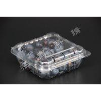 环保PET材质小蓝莓盒