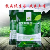 山东绿影生物厂家直销生物肥功能菌