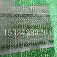 安顺市专业批发绿色一针半盖土网