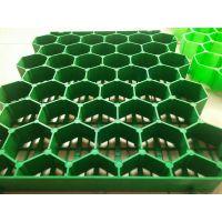 江苏植草格厂家/塑料植草格