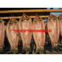龙优GYB-252ZG鱼烘干机价格
