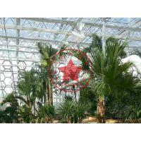 观光植物园玻璃连栋智能温室大棚造价—青州瀚洋农业