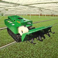 普航多功能自走式开沟机 功率大柴油施肥开沟机 大棚专用的履带式拖拉机