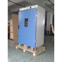 立式鼓风干燥箱 200℃ DHG-9203A