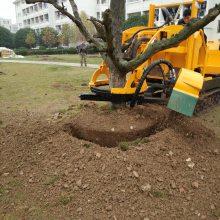 供应苗圃地专用挖树机