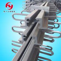 供应桥梁伸缩缝 D40 60 80 160型公路伸缩缝 C型 F型 E型 伸缩缝