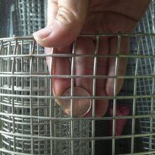 环航不锈钢电焊网供应正品304不锈钢丝电焊网/养殖网2.5CM孔