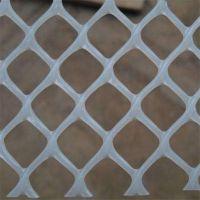 家禽养殖网 塑料脚踩网 雏鸡脚垫漏粪板