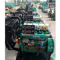 宜春ZH4100D柴油机 44kw叉车装载机用柴油机带打气泵 助力转向接口