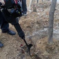 便携式挖树机规格 大马力起树机价格 铲头式挖苗机型号