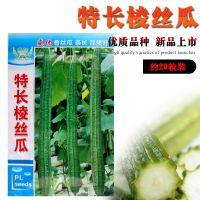 特长棱丝瓜种子批发 春播蔬菜种子春季种 庭院瓜果 口味好抗病