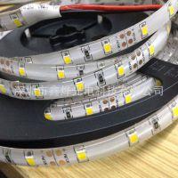 3528-60D-8MM软灯带白光 60灯一米 滴胶防水灯条 IP65 DC12V 贴片