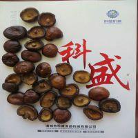 绍兴香菇脆低温真空油炸机 果蔬真空油浴脱水机厂家