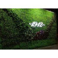 室内植物墙设计保定昊帅植物墙