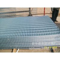 供应各种粗丝小孔网片,监狱护栏网片,镀锌电焊网片,小孔网片