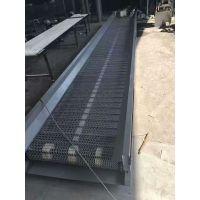 玉溪挡板网带输送机 厂家提升爬坡输送