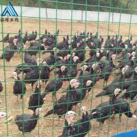 直销铁丝网围栏养殖养鸡,养鸡围栏网报价