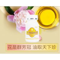 牡丹籽油凝胶糖果 大连悠久牡丹直供 养生 保健