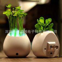 智能磁悬浮盆栽空中盆景方案 智能盆栽电子电动控制器设计