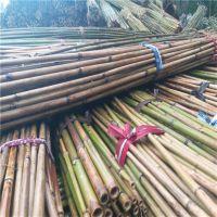 大量批发甘肃景泰用的2米-2.5米西红柿架竹竿(图)