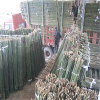 大量批发供应2.5米、3米优质江西山药架竿