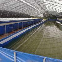室内大棚养虾帆布水池防漏耐用帆布水池