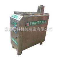 新型lk-01高压蒸汽洗车机 商用高压蒸汽清洗机 汽车美容清洗设备
